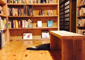 vol.27 特集 人をつなげる「本のある場所」