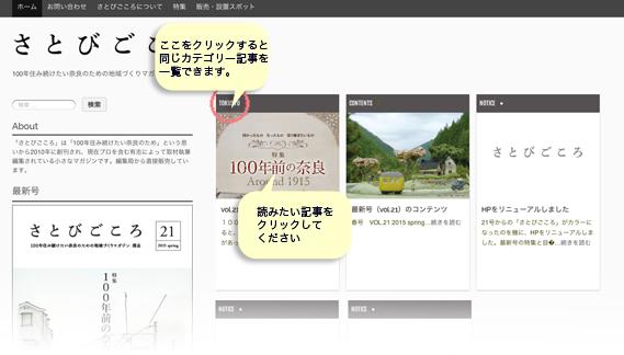 siteCommentary