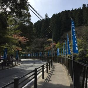 神社の近くには旗