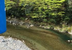 谷先生といく 川遊びネイチャーウォッチング
